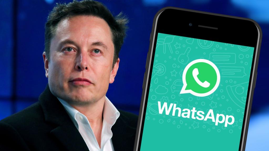 Shutterstock / Mediamodifier / Whatsapp